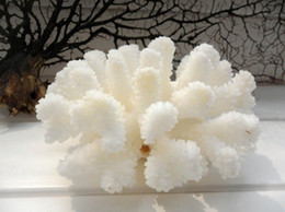 white sea coral NZ - 12-14cm Natural Coral Sea White Coral Tree White Coral Aquarium Landscaping Home Furnishing Ornaments Home Decoration