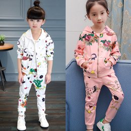 Wholesale Girls 3t Fall Clothes - Girls Casual Clothing Sets Hoodie Pants Cartoon Graffiti Flower Zipper Sweater Pocket Long Sleeve Baby Kids Suits Spring Fall Outfits