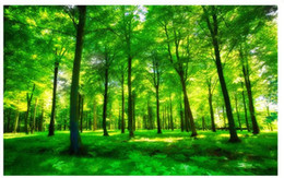 forest background backdrops Coupons - 3D Wallpaper Mural Decor Photo Backdrop Beautiful green light forest living room TV background wall decoration painting TV Background 3D Mu