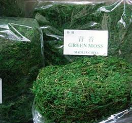300 g / lote Mantenga Seco Real Verde Musgo Plantas Decorativas Florero Césped Artificial Seda Accesorios de Flores Para Maceta Decoración desde fabricantes