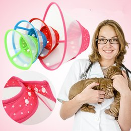 Wholesale Hot Dogs For Wholesale - Hot Pet Necklace Bite Proof Leather Belt With Durable Classic Style For Pet collar Training Holding Walking Dog Collars T1I394