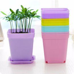 Wholesale garden potting tray - Wholesale 7 Colors Mini Plastic Flower Pots+Plastic Tray Vase Square Flower Bonsai Planter Nursery Pots Flower Pots Garden Tool Home Decor