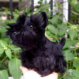 muñeca de dibujos animados de doraemon Rebajas Simulación Perros Muñecas Peluche Animales Juguete Lindo Schnauzer Muñeca Juguetes Niños Regalo Negro