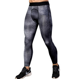 Escamas leggings online-Nuevos Rashghard Sport Pants Men Running Mallas Snake Scales Fitness Leggings Gym Ropa Compression Trainning Pantalones de entrenamiento