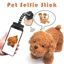 óculos de cão de plástico Desconto Pet Selfie Vara para Animais de Estimação Cão Gato Leve Fotos Treinamento Brinquedo suprimentos para animais Phone Attachment fit iPhone Samsung huawei xiaomi