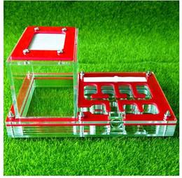 Pequenos brinquedos de fazenda on-line-Ninho Habitação transparente Inseto Gaiola Fazendas de Exibição Acrílico Feed Trapézio Caixa Ant Villa Pet Pequeno Gaiolas Kid Brinquedos Educativos