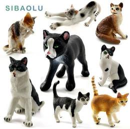 Mini Simulazione gatti miniatura figurine giocattolo animale statua Modello Bonsai Giardino Piccolo Ornamento Home Garden Decoration home decor da