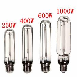 natrium-glühbirnen Rabatt Wachsen Sie Licht HPS Lampe E40 250W / 400W / 600W / 1000W Natriumhochdruck Blumenzwiebel Blumen Gemüse Pflanze wachsen Lampe für Vorschaltgerät