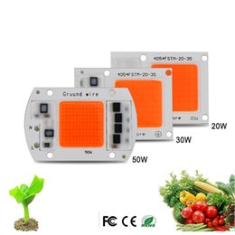 Wholesale hot chips - 5pcs Hot ac220v real full spectrum 380-840nm indoor instead sunlight actual Power 20w 30w 50W DIY led grow light chip for plants