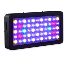 Wholesale aquarium decorations free shipping - Fish tank 165W 300w Dimmable Led Aquarium lights Free shipping for marine aquarium professional Full spectrum Decoration hot sale