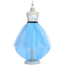 72b53ff60b2 robes légères pour petite fille Promotion Pas cher 2018 Ciel Ciel Bleu  Fleur Filles Robes Salut