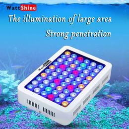 Wholesale Led For Reef Aquarium - Professional lighting 180w fish Aquarium lights Free shipping for marine aquarium Full spectrum light in the reef