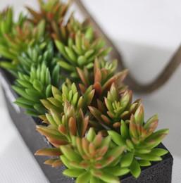Verde chiaro floccato pianta artificiale Mini succulente foglia di loto giardino succulente paesaggio falso fiore decorazione della casa cheap flocked flowers da fioravano fiori fornitori