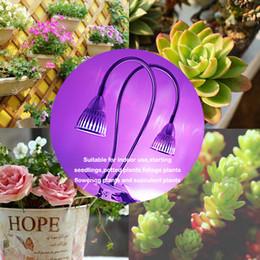 2019 flexível pescoço levou lâmpada Edison2011 Dual Head LED Espectro Completo Crescer Luzes 10 W Clipe de Mesa Planta Crescer Lâmpada com 360 Graus Flexível pescoço de Ganso para o Interior desconto flexível pescoço levou lâmpada