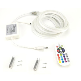 220 V Néon LED Strip RGB Lumière SMD 5050 16 Couleur Changement avec 24 Touches IR Télécommande UE Power Plug Étanche Ruban pour Bridge Garden ? partir de fabricateur