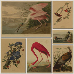Wholesale Cafe Picture - Bird species collection Retro poster Vintage painting home decor classic print and picture bar cafe paint wall art sticker