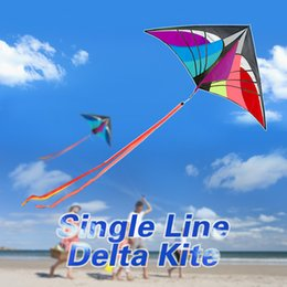 Wholesale Blue Tail Fly - 160 x 90cm   63 x 35.5in Large Delta Kite Outdoor Sport Single Line Flying Kite with 30m Handle Line and Tail Beach Toy
