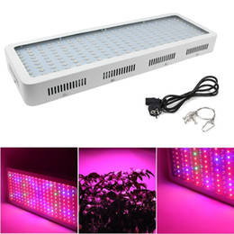 Wholesale Flowers Lamps - 2018 Double Chip 1000W Full Spectrum Grow Light Kits 600W 2000W Led Grow Lights Flowering Plant and Hydroponics System Led Plant Lamps