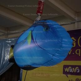 Parti dekoratif şişme balık airblowing LED ışıkları ile şişme balık balon şişme akvaryum decortive balık balon nereden