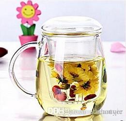 vasetti di fiori di vetro all'ingrosso Sconti Commercio all'ingrosso resistente al calore vetro teiera fiore Puer teiera caffè Pot Teaset ufficio conveniente
