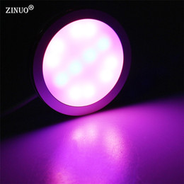 Wholesale Fish Grow Light - ZINUO 1PC 4W USB LED Plant Growing Light 12Leds Red And Blue Full Spectrum Hydroponics Lamps For Plants And Fish Flower Growth