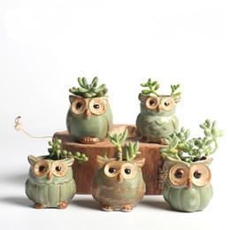 2019 büropflanzer 5 teile / los Kreative Keramik Eule Form Blumentöpfe Für Fleischige Sukkulente Tier Stil Pflanzer Hausgarten Büro Dekoration rabatt büropflanzer