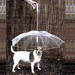 vente en gros cool fournitures pour animaux utiles utile parapluie transparent pour animaux de compagnie petit chien parapluie équipement de pluie avec chien mène maintient l'animal au sec A220 ? partir de fabricateur