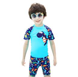 Maiô para meninos on-line-Novo estilo de duas peças terno de natação crianças menino bonito dos desenhos animados dinossauro impresso swimsuit proteção solar crianças menino swimwear