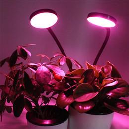2019 maior par led grow light 2018 CE ROHS GS 8 W USB Clipe cabeça dupla levou planta crescer lâmpada com gooseneck flexível 14 DIODO EMISSOR de luz crescer luz