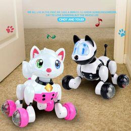 2019 cane controllato a distanza Smart kids pet toy dog cat infrarosso telecomando serie cat dog robot cane controllato a distanza economici