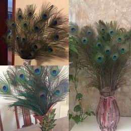Argentina Hermosos plumas de pavo real natural ojos para DIY decoración de la ropa banquete de boda 25-30 cm 10-12 pulgadas Suministro