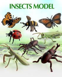 scarabeo giocattoli Sconti 8 stili simulazione Insetti Modelli Fattoria paesaggio cavalletta PVC Mantis farfalla coccinella cervo volante Action Figure Insetti bambini Giocattoli FFA1187