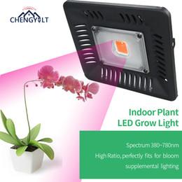 Grünes haus wachsen lichter online-LED-Anlage wachsen Licht 50W rot / blau Pflanzenwachstum Lampe Led volles Spektrum COB wasserdicht 110v 220v grünes Haus Blumengarten