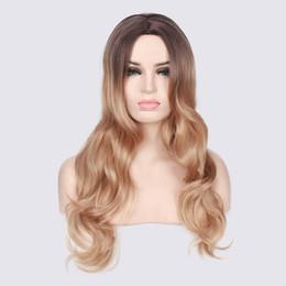 Perruque de cheveux longs et bouclés élégant teinture multicolore teinture anime perruque cospaly perruque accessoires de jeu de rôle modélisation ? partir de fabricateur