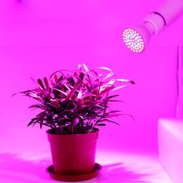 Lámpara de luz cfl online-Lámpara LED Lampada cfl Grow Light E27 GU10 220V 80leds Full Spectrum Planta de interior Lámpara para plantas Sistema de hidroponía Vegs Planta