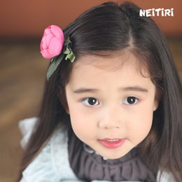 Wholesale Girl Mini Tiara - Trial Order Infant Hair Clip Mini Flower Snap Clip Baby Girl Snap Clip for Toddlers and Children 30pcs LOT Queen Baby A8315