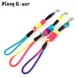 Wholesale Wholesale Rainbow Dog Collars - Rainbow Color Pet Dog Traction Rope Puppy Training Nylon Belt Pets Leads Collars S -XL