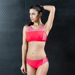 39f18b0c66a New Split Triangle Spa Professional Swimsuit Sexy Slim Swimsuit Two-Piece  Swimwear High Quality Bikini Set Plus Size Swimming Wear Sport Top