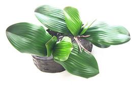 lasciare l'orchidea artificiale Sconti Vero tocco farfalla orchidea foglia artificiale PU pianta verde lascia succulente decorazione della casa
