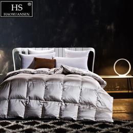 2019 tessuto di seta d'argento HS Filling Power 700 Luxury 19MM Tessuto in seta di gelso Piumino in piuma d'oca King Queen Size Coperta invernale grigio argento tessuto di seta d'argento economici