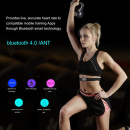 Wholesale Heart Rate Chest - Smart Bluetooth V4.0 Fitness Wireless Heart Rate Monitor Sensor Chest Strap Sport Equipment for Android Mobile Phone Bluetooth 4