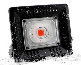 Led Grow Light Full Spectrum 100W IP67 impermeable COB Grow Lámpara LED para la planta Interior exterior hidropónico Invernadero Lighting LLFA desde fabricantes