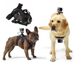 Wholesale Correa de perro ajustable para Gopro Nylon arneses para perros Correa para el pecho del animal doméstico Correa de la cámara deportiva Holder cinturón