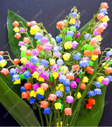 Wholesale orchid flower plants - 120 Pcs Lily of the Valley Flower Seeds , Bell Orchid Seeds,Rich Aroma ,Bonsai Balcony Flower for Home Planting DIY Potted Plants