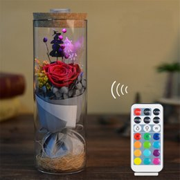 Wholesale dried flowers glass - WR Colorful Eternal Rose in Glass Cover with LED Light Remote Control Wedding Decoration Dried Flowers for Valentine's Day Gifts