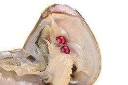Redonda Oyster Pearl 6-8mm 20 Color de la mezcla Ostras de agua dulce con perlas gemelas Regalo DIY perla natural Perlas sueltas Decoraciones Empaquetado al vacío desde fabricantes