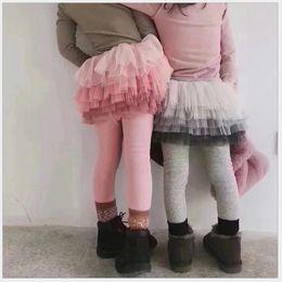 Meninas Saia Leggings Calças Outono Inverno Crianças Lace Net Collants Fios Leggings Menina Com Saia Crianças Calças Pantskirt 5 pçs / lote de