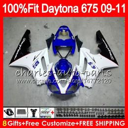 Triumph Daytona 675 09 10 11 12 Gövde 107HM.6 Daytona-675 mavi beyaz Daytona675 Daytona 675 2009 2010 2011 2012 Fuarı nereden