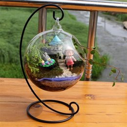 Wholesale Hanging Glass Plant Containers - LanLan Creative Clear Glass Ball Vase Micro Landscape Air Plant Terrarium Succulent Hanging Flowerpot Container