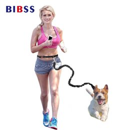 Wholesale Elastic Cat Collars - Pet Dog Leash Dogs Hands Free Elastic Running Jogging For Cats Puppy Outdoor Sport Safety Led Waist Collars Belt